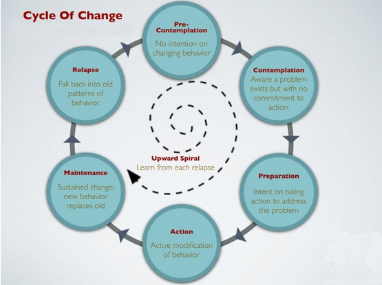 Cycle of Change for Insurance Agency